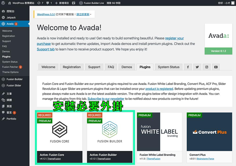 安裝 Avada 必要外掛