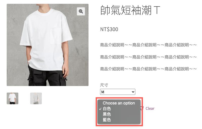 WordPress多國語言 :下拉選單中的文字