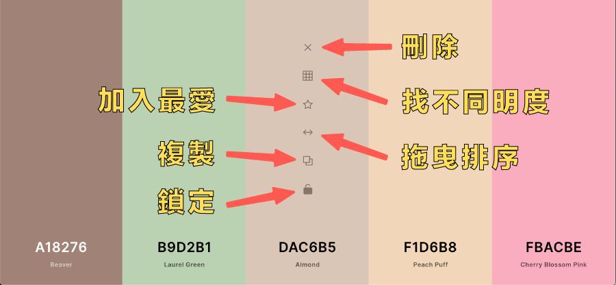 Coolors 配色功能介紹