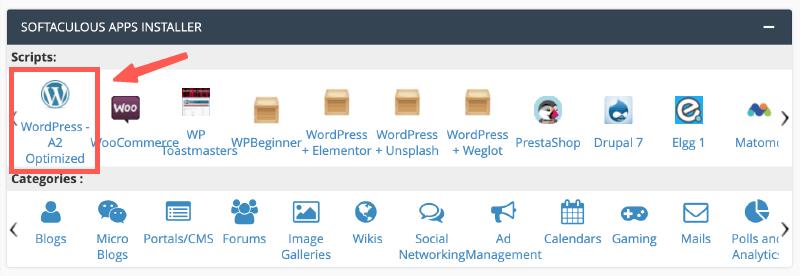 選擇要安裝的網站類型