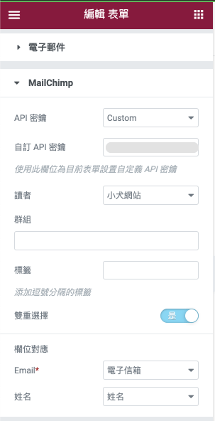 Elementor Pro 客製化表單:設定 Elementor & MailChimp 串接,相關資料