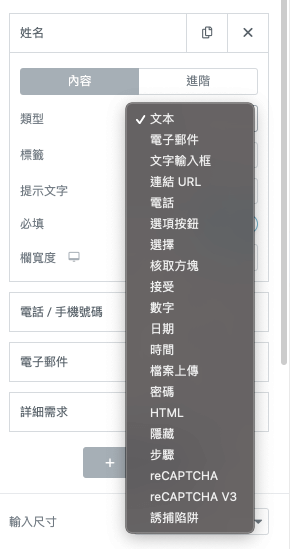 Elementor Pro 客製化表單:多種格式選項