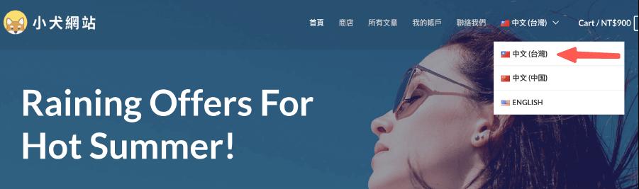 Polylang 教學:台灣語系的網站